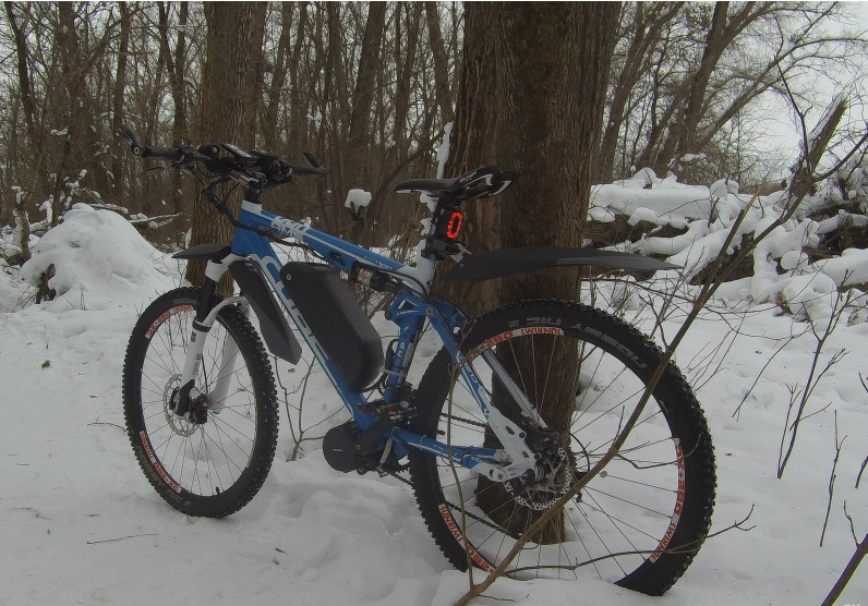 ebike in forest